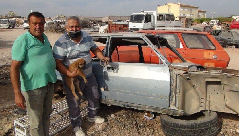 Kafası sıkışan yavru köpeği sanayi esnafı kurtardı
