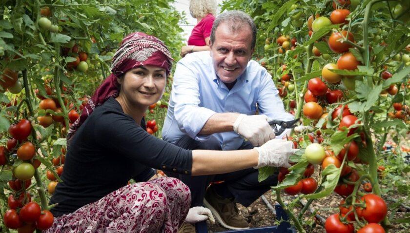 Mersin'de tarım kalkınıyor, üretici kazanıyor