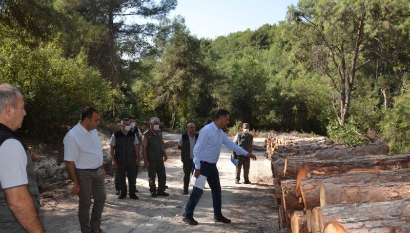 Orman Bölge Müdürü Akduman'dan Mersin ormanlarında inceleme