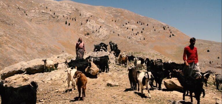 Bolkar Dağlarının konargöçer Yörüklerinin yaşamı belgesel oldu