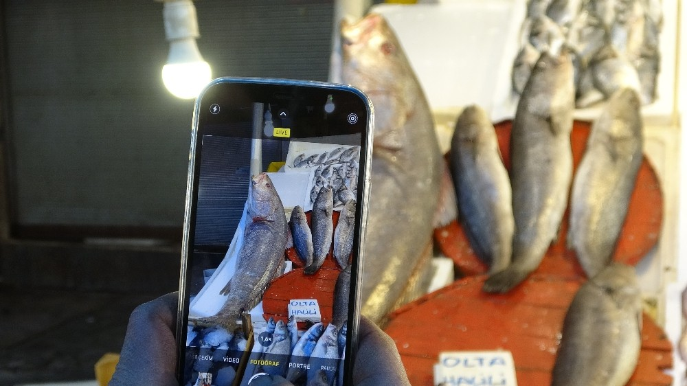 Dev halili balığı ilgi odağı oldu