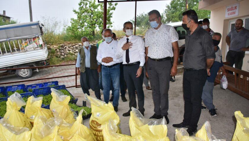 Tarsus Belediyesinden doludan zarar gören çiftçilere 7 ton gübre, 50 bin marul fidesi