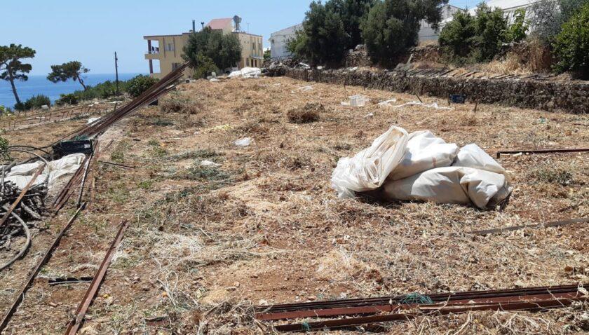 Mersin'de yası dışı orman arazisi işgaline izin verilmiyor